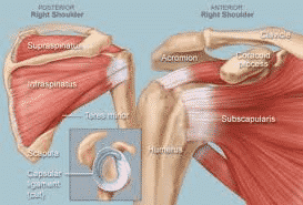 Make a Call to know the best shoulder joint surgery in Hyderabad, best orthopedic doctors near me