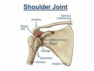 Make a Call to know the best shoulder joint surgery in Hyderabad, best orthopedic shoulder specialist near Hyderabad
